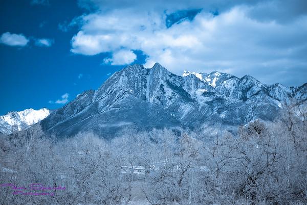 Twin Peaks-0061