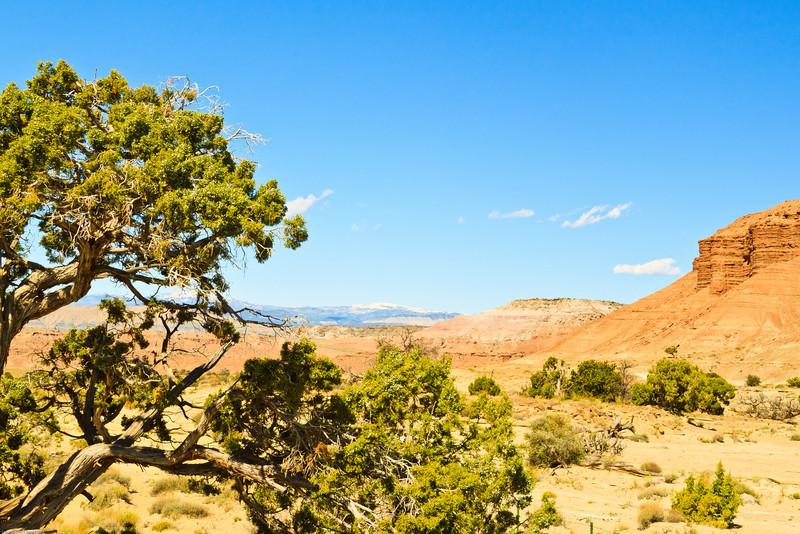 A landscape taken June 7, 2011 near Green River, UT.