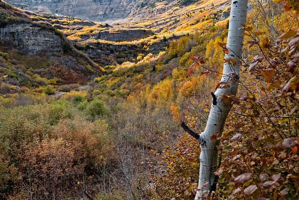 Utah Mountains near Sundance