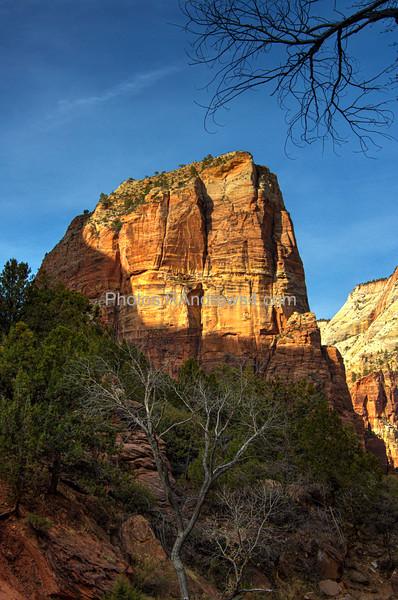 20210319 Zion National Park Select
