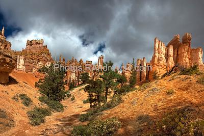 Bryce National Park, Queen's Garden Trail