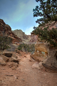 Capitol Reef National Park, Grand Wash
