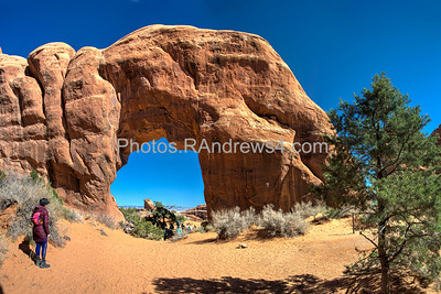 Arches National Park, Pine Tree Arch