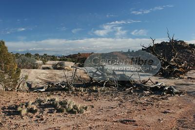 Klondike Bluffs, Moab, Utah