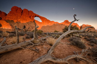 """Our tour was planned to catch the full moon, and we took """"full"""" advantage of it, here rising near Skyline Arch."""