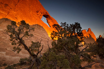 The (nearly) full moon in Skyline Arch.