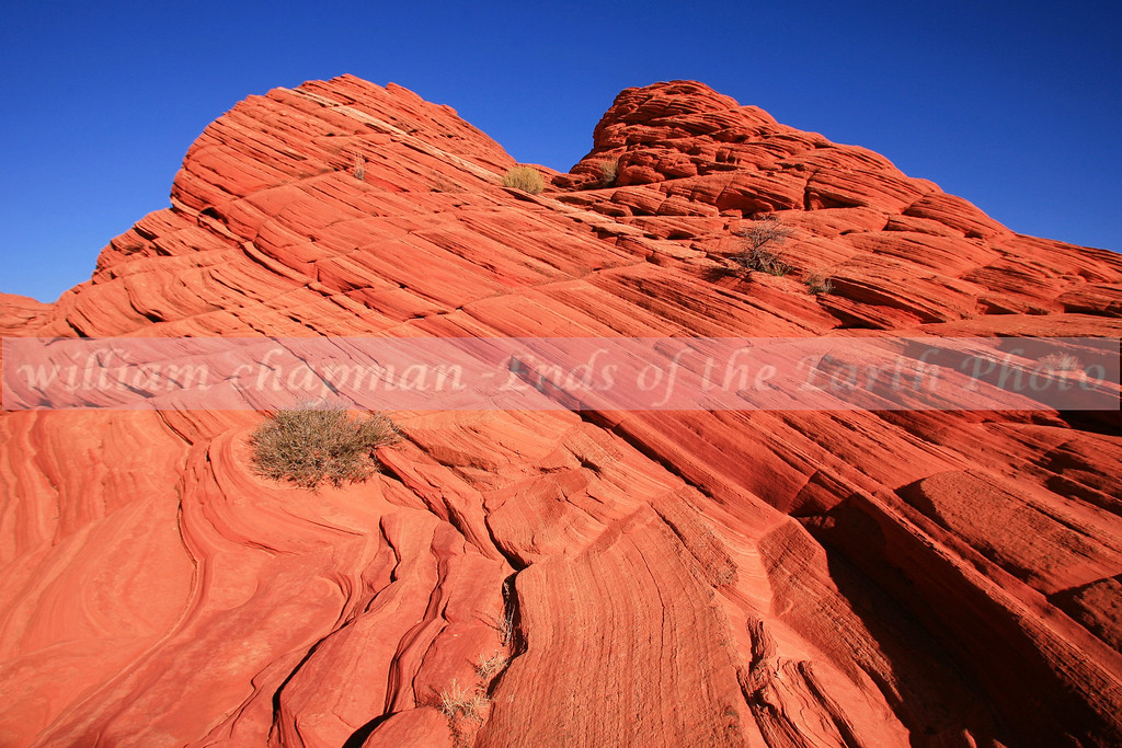 Coyote Buttes2