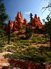 10d 09 BC Navajo Btm Hill Up V