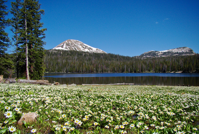 The Uinta and Wastach mountains of Utah