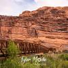 47  G Arches Rocks Bridge Over Colorado