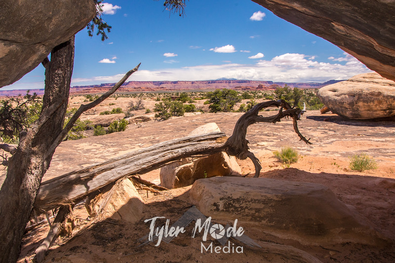 676  G Canyonlands View From Rock