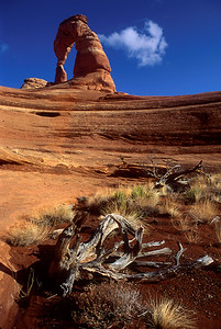 Delicate Arch from the sandstone bowl below