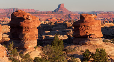 Butte and Two Towers for a trio of red beacons as sunrise spreads over Canyonlands, from the Needles section in the foreground to the Maze in the far distance.