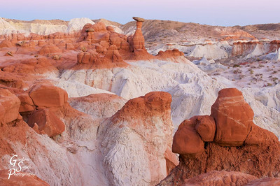 This is a picture of the broader area at Toadstool Hoodoos, west of Page, AZ.