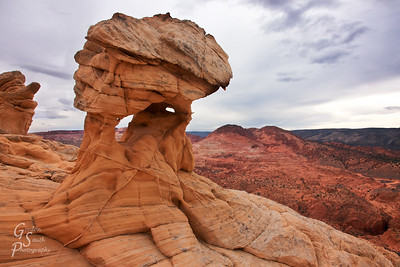 Delicate Massive Sculpted Rock standing over the cliffs of West Clark bench.  The arch holes and sandstone fins are everywhere.
