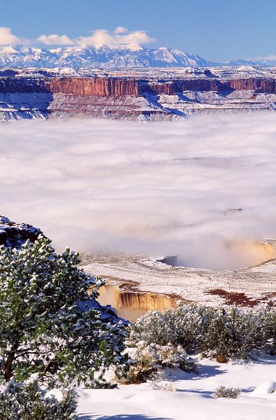 Winter Fog over White Rim