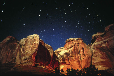 Davis Canyon.  Needles District, Canyonlands National Park.  5-minute exposure with moonlight and fill light from a gas lantern.  ASA 100 film.  Olympus OM4 with 28 mm lens at f2.8.