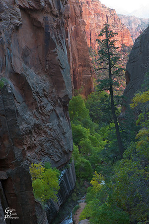 Looking down Water Canyon as the sunrise light penetrates into the slot.