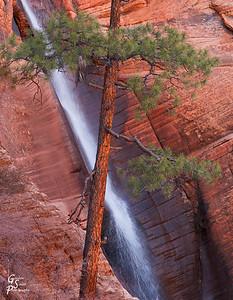 Water Canyon Waterfall Closeup