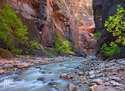 Upstream to the Narrows