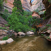 End of Right Fork, Zion
