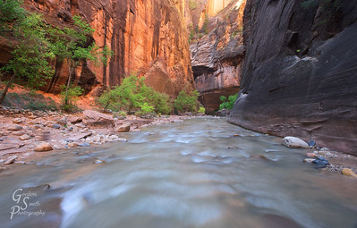 Virgin River Flow in the Narrows of Zion National Park