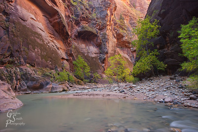 Zion Eden Zen are just a few words the spring to mind contemplating the Zion Narrows in autumn.  The waters are smooth and cool, the trees prepare for winter and orange light glows throughout the canyon.
