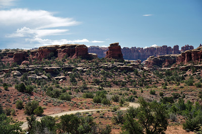 Canyonlands - The Needles