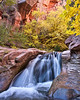 Kanarra Creek Fall Falls<br /> <br /> Fall colors & waterfall in Kanarra Creek.<br /> Kanarraville, Utah, USA