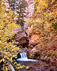 Kanarra Creek Fall Colors<br /> <br /> Fall colors around Kanarra Creek<br /> Kanarraville, Utah USA