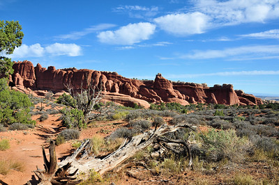 Along the primitive trail at Devils garden