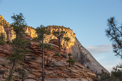 Zion NP-62