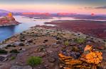 Alstrom Point Sunset