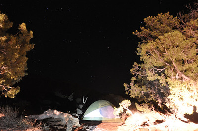 Night sky at our campsite in Devils Garden, My camera did not capture the brilliancy of the milky way, or the trillions of stars the Utah desert displays at night. Or just how tiny you feel under that massive sky, lighting the way up to the heavens.