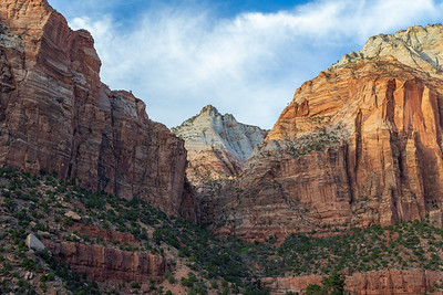 Zion NP-54