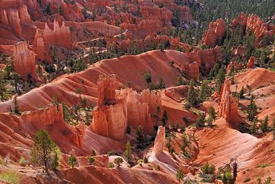 Bryce's Basin