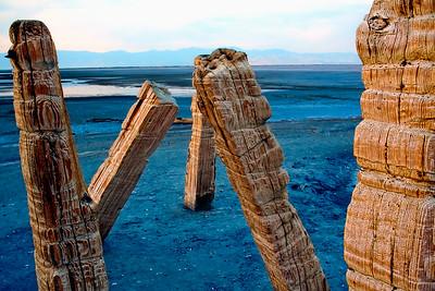 rope burns @ Great Salt Lake, Utah