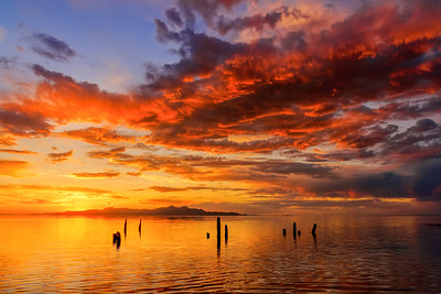 Great Salt Lake Black Rock Sunset