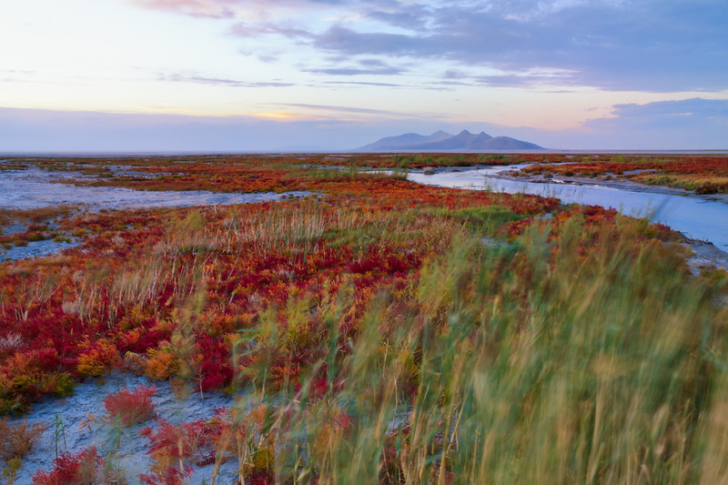 Great Salt Lake Fall colors