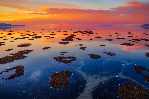 Reflecting the Infinite