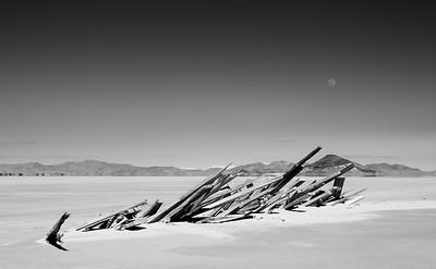 wood and the knob @ Great Salt Lake, Utah
