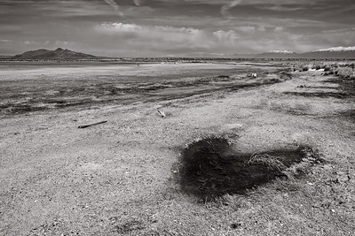 black heart out at the Great Salt Lake