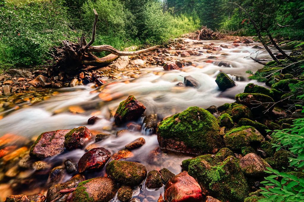 Little Cottonwood Creek, White Pine Trail