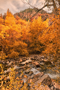 big cottonwood canyon fall colors fantasy
