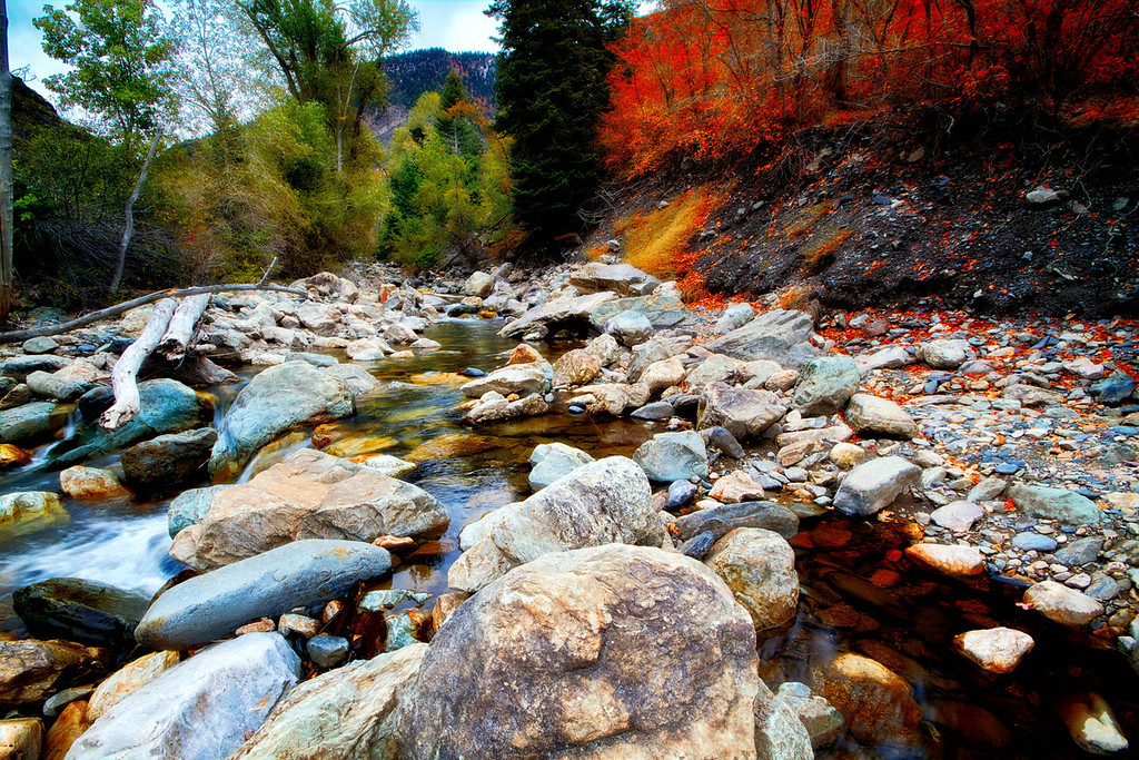 big cottonwood canyon from the rivers edge