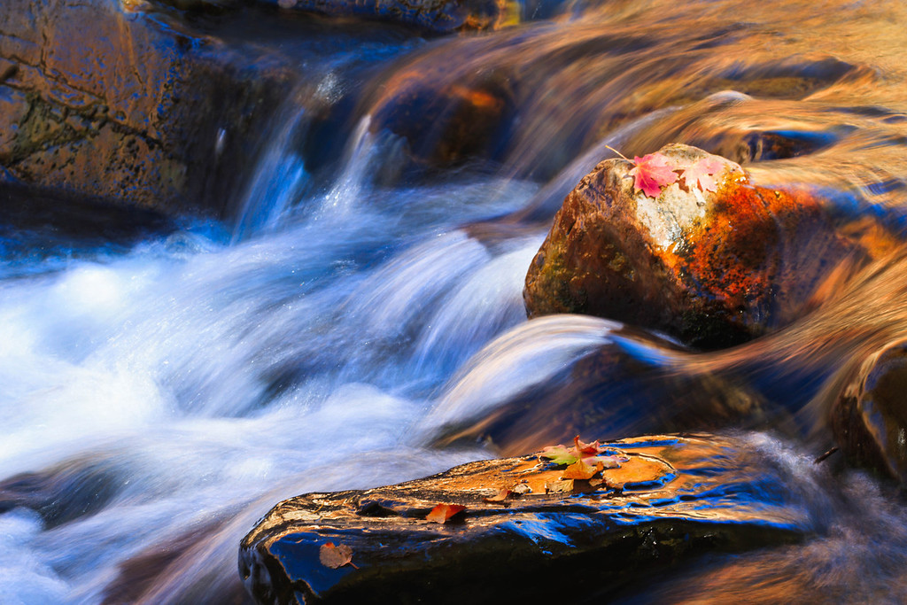 282 of my 365 project; Big cottonwood creek