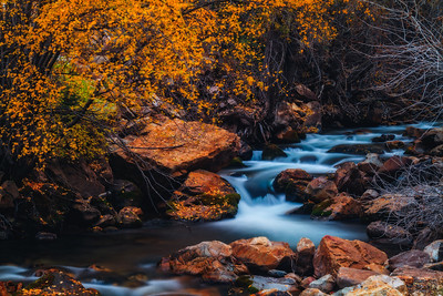 mystical Big Cottonwood Creek