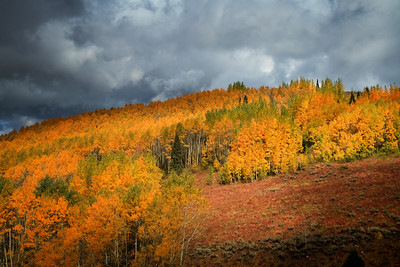 the top of Big Cottonwood canyon 10-2-11