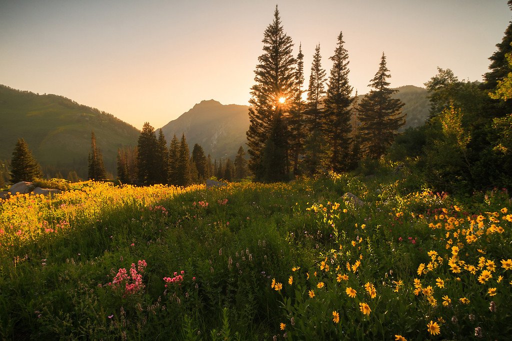 albion basin sunset