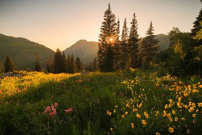 albion basin sunset